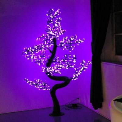 Location Arbre Bonzai lumineux pour vos evenements prestigieux à Ramatuelle 83350 Var PACA